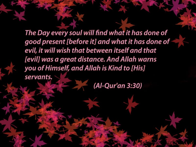 Quranic Verses | Islamic Sharing